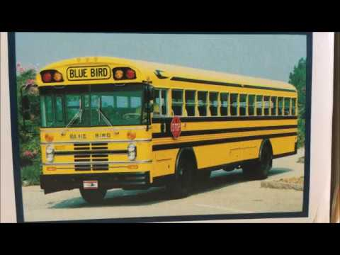 Blue Bird All American All Canadian School Bus Bank Review