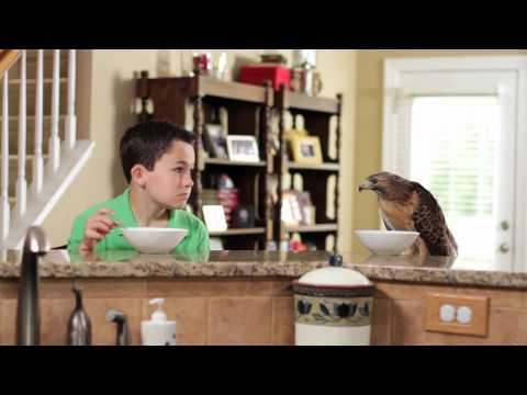 "BURKE   Charlotte Video Production   Carolina Raptor Center  ""Meet The Raptors"" 30 sec spot Official"