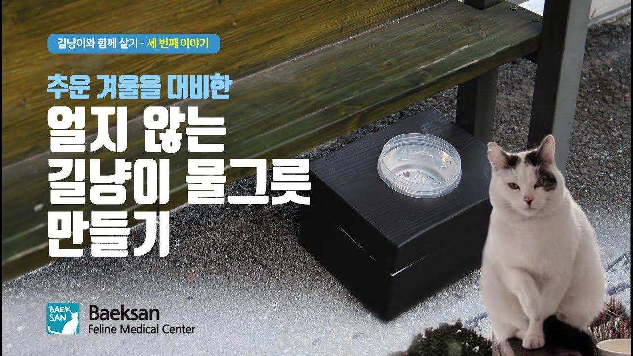 겨울철, 얼지 않는 길고양이 물그릇 만들기