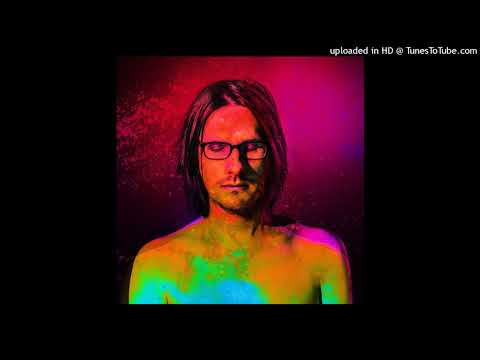Steven Wilson - A Door Marked Summer