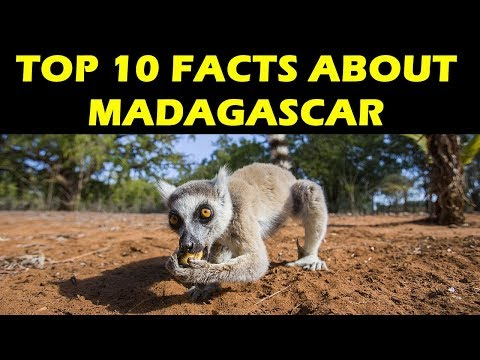 Top 10 facts about Madagascar