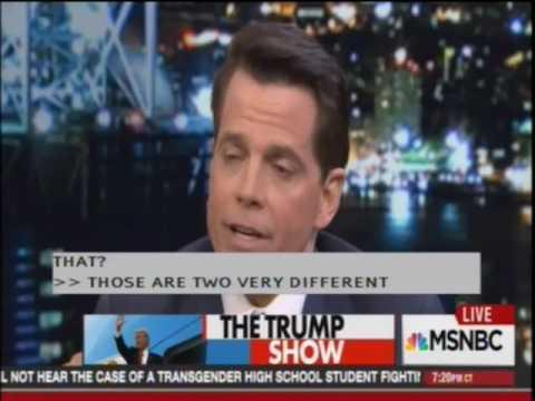 Chris Hayes interviews Trump adviser Anthony Scaramucci