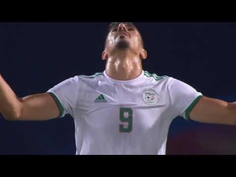 Algeria vs Guinea 3 - 0 Highlights & All Goals   AFCON  2019