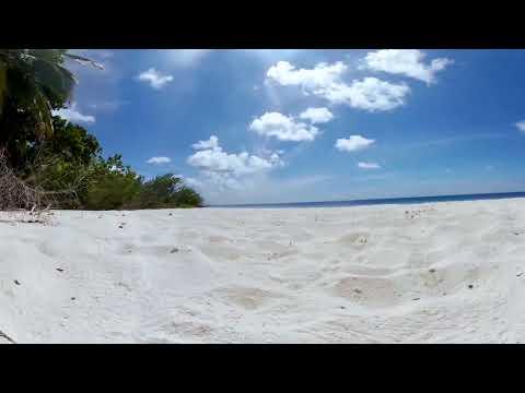 Tropical Island Beach | 360 VR Meditation