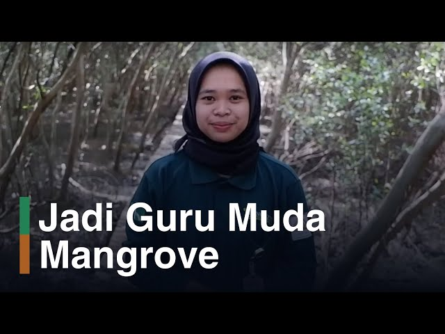 Mengajar Mangrove di SDN Bedono 2 Demak