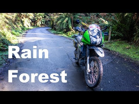 Kawasaki KLR 650 Around Australia - Tarra Valley Rain Forest & Ninety Mile Beach (Ep 17)