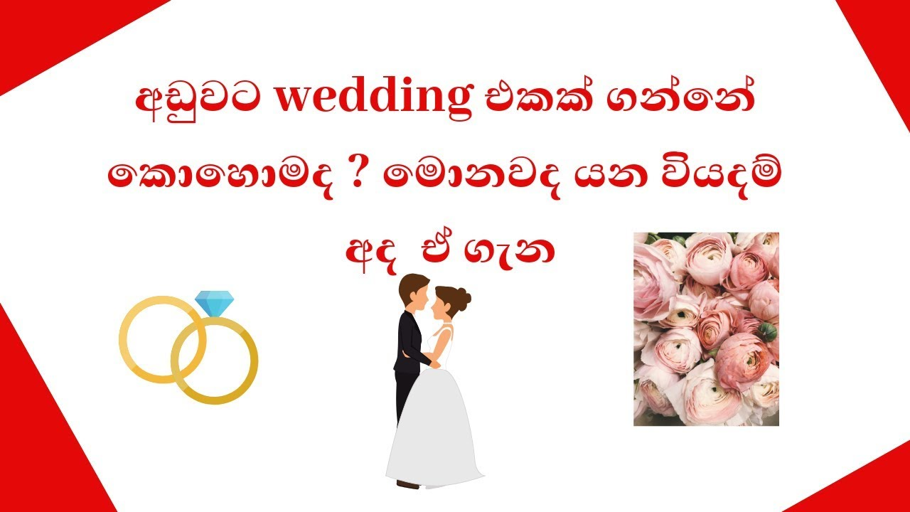how to plan a wedding in srilanka-lion lanka labs