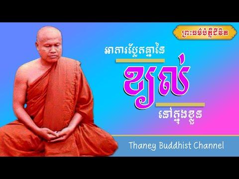 អាការប្លែកគ្នានៃខ្យល់នៅក្នុងខ្លួន |ព្រះធម្មវិបស្សនា សំ ប៊ុនធឿន កេតុធម្មោ | Thaney Buddhist Channel