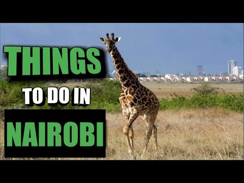 NAIROBI GUIDE , THINGS TO DO