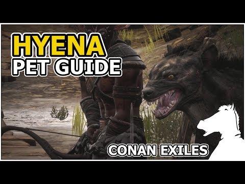 HYENA | Pets Guide | CONAN EXILES