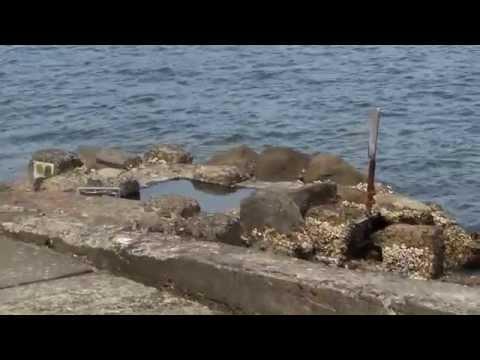 FOOT BATH free for public in Ibusuki City, Kagoshima - enjoy ocean view - (29 April 2015)