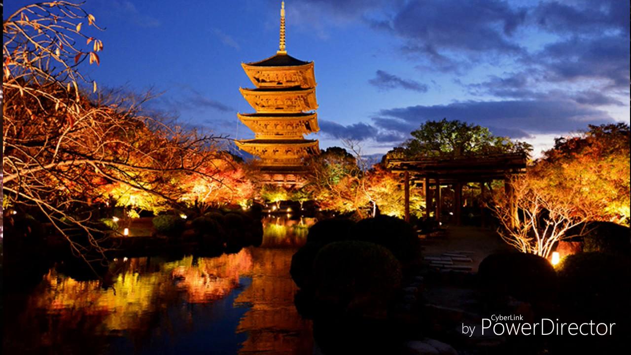 安眠BGM/癒し/作業用BGM/ヒーリング Japan night innsekuto nature sonde