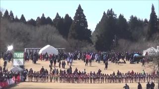 千葉県クロカン2017 高校男子3km