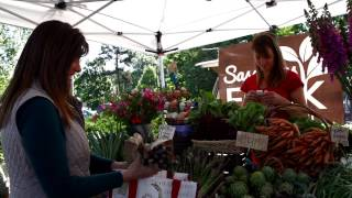 All In 4 Health Farmers' Market Commercial
