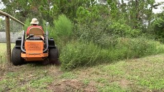 Mowing tall thick grass 8 - Really tall