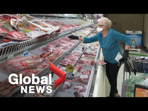 Coronavirus outbreak: Virus may have mutated; fears over rising food prices