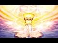 IUD-IL (DO AGRUPAMENTO PLÊIADES 2) -