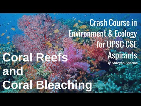 Coral Reefs and Coral Bleaching - Environment & Ecology for UPSC CSE By Shreyaa Sharma