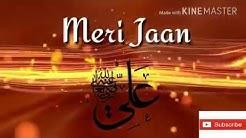 Download Mir hassan mir manqabat with lyrics haider mola for