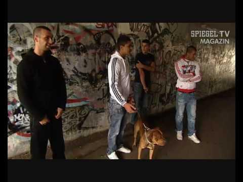 Spiegel tv jugendgewalt in deutschland for Youtube spiegel tv