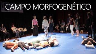 Campo Morfogenético e Constelações Familiares | Mario Koziner