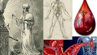 Blood, a Biblical/Quantum Physics Perspective - Jim Wilhemsen