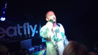 STEPPA STYLE - JUNGLE REBEL (TOUR 2011 LIVE IN OPAVA)