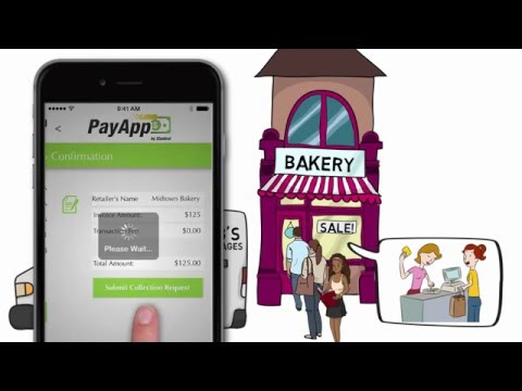 PayApp™ Informative Video for Suppliers