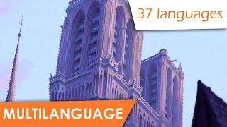 The Bells of Notre Dame (multilanguage   37)