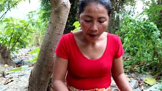 Survival skills: Catch snails & boiled snail on clay for food - Cooking snails eating delicious #55
