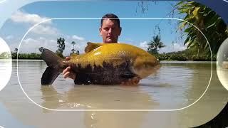 Fishing in Thailand @ Jurassic Mountain Resort and Fishing Park: Mark tackles the tambaqui