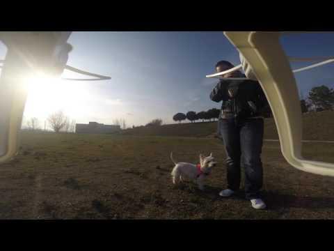 Vuelo Drone Ninco Stratus con Go Pro Hero3+