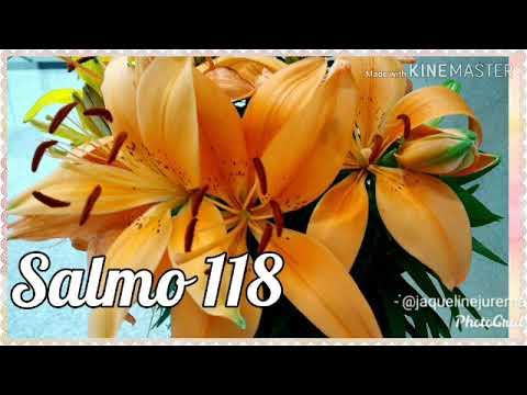 SALMO 118 COM JAQUELINE JUREMA