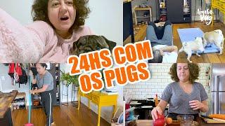 Rotina da quarentena com os Pugs | Amigo Pug