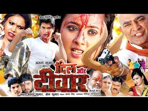 Dil Aur Diwar || दिल और दिवार || Bhojpuri Full Movie || Bhojpuri Full Film 2015 | Rani Chatterjee