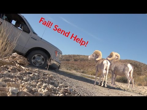 This Happened On My 1st Big Horn Sheep Hunt! (FAIL!)