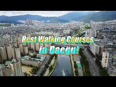 Best Walking Courses in Daegu!