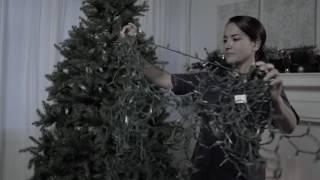Tree Dazzler aims to detangle Christmas