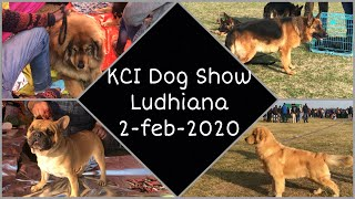 KCI Dog Show Ludhiana 2nd February 2020