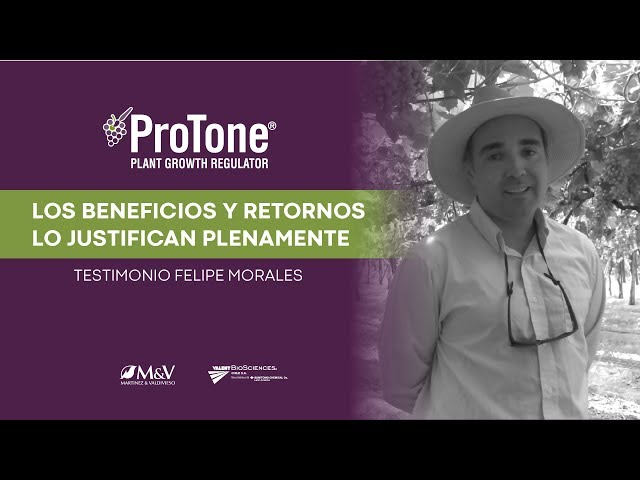 💪🍇 Protone | Testimonio de Felipe Morales [Vertical Video]