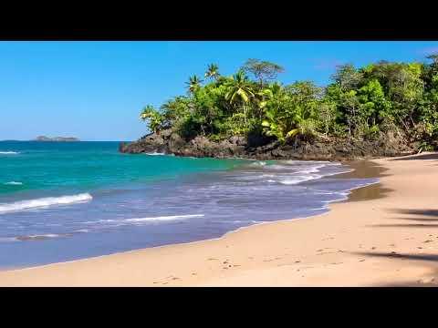 Olas Del Paraíso - Playa Hermosa Con Sonidos Relajantes Del Mar Sin Música