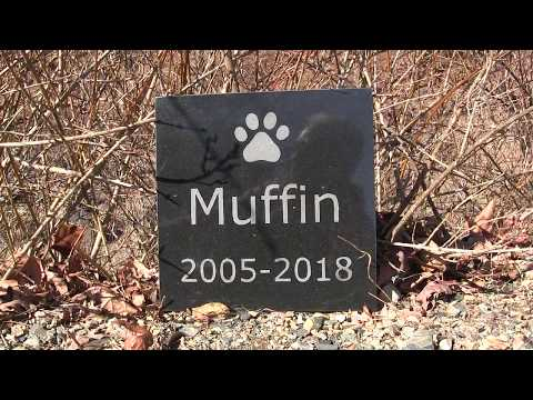 How To Make A Granite Marker For Your Pet S Grave Youtube