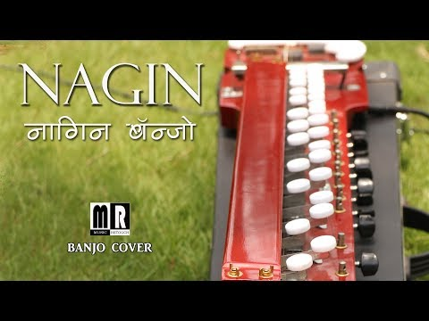 NAGIN MUSIC  BANJO COVER ( नगीना  )| Bollywood Instrumental | By music retouch
