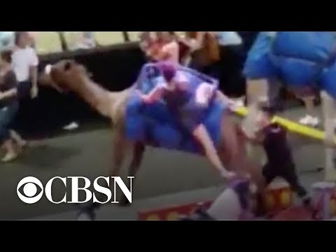 Circus camel gets spooked, injures six kids and one adult