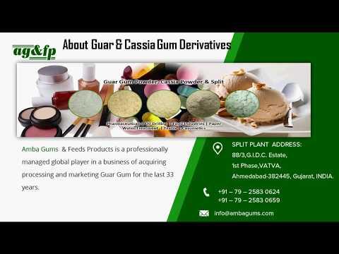 Guar and cassia Derivatives - www.ambagums.com