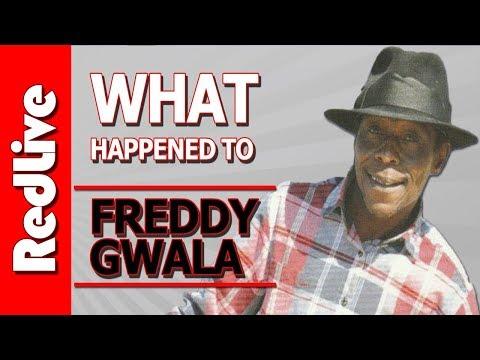 What Happened to Freddie Gwala