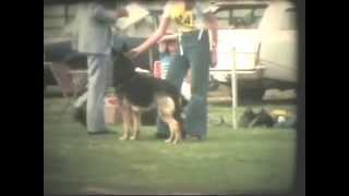 German Shepherd Dog Show Adelaide 1975 - Judge Louis Donald