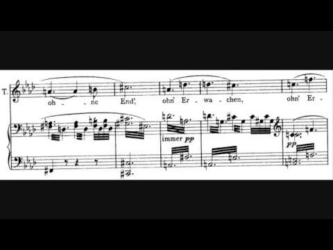 """Richard Wagner - Love Duet from Tristan & Isolde (Act II) """"O sink hernieder, Nacht der Liebe"""""""