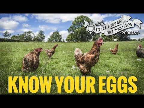 #76 Know Your Eggs | Total Human Optimization Podcast