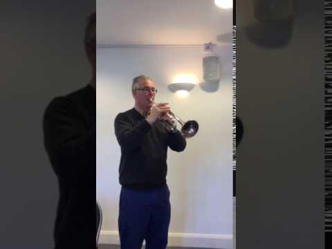 Trumpet-D